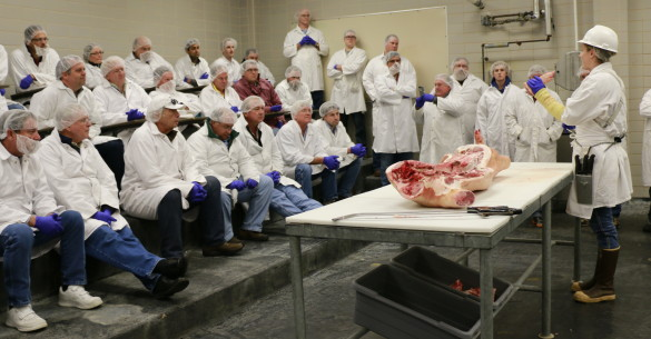 Barbecue Summer Camp participants learning about cuts of pork